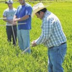 Grazing management workshop to be held