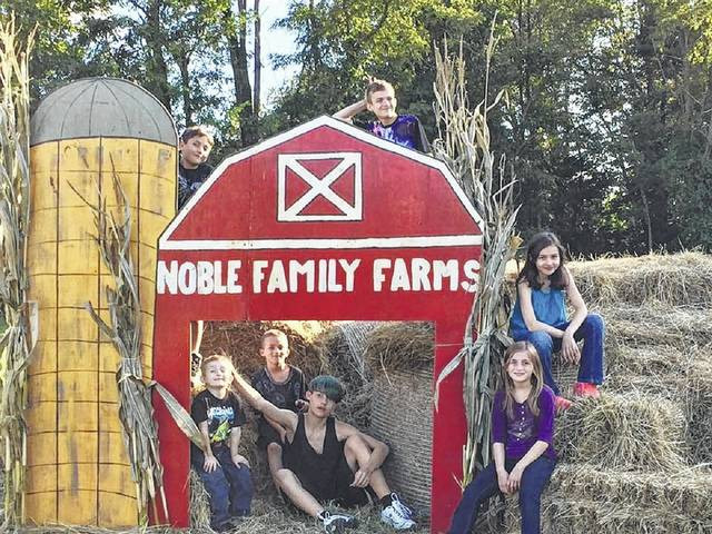 Suffers of Type 1 Diabetes spent a day on the farm for some family-friendly free activities.