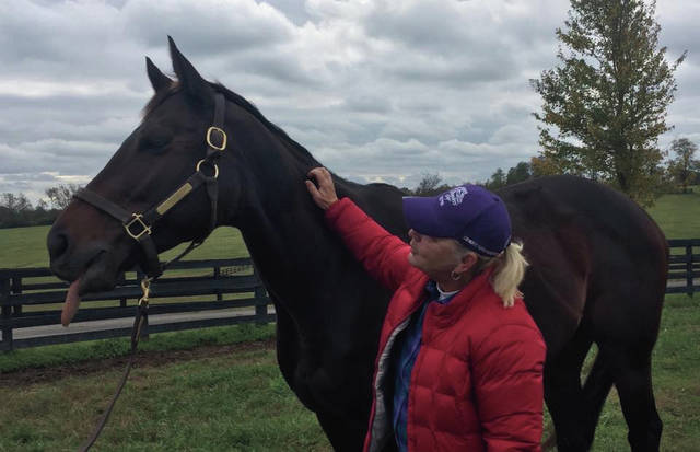 Minford native and Louisville, Ky. resident Dianne Bond Volz pets a horse. Volz is the co-founder of Equine Therapy 502 in Louisville and has been in the equine therapy business for 29 years. She has worked on eight horses that will be running in the 144th Annual Kentucky Derby on Saturday.