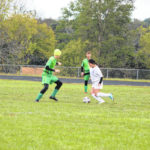 Trojans fall 5-1 in sectionals