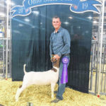 Coriell wins at Ohio State Fair