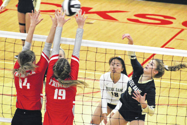 Notre Dame junior Ava Hassel goes for a kill during the Titans district semifinal win over Trimble, Thursday, in Jackson.
