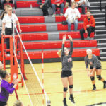 Lady Falcons sweep Panthers for sectional crown