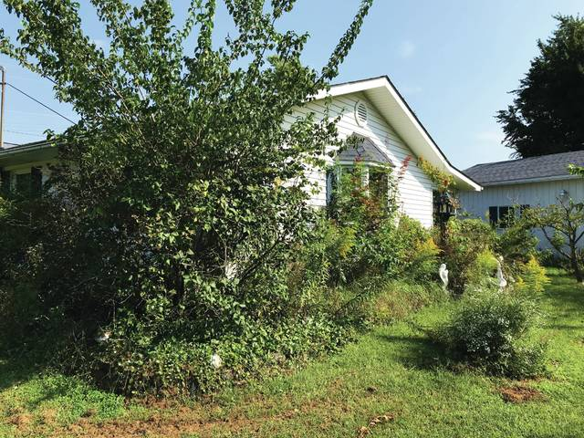 How do overgrown, hard-to-maintain, out-of-control landscapes happen? It starts at the very beginning, and to fix it you sometimes have to start over.