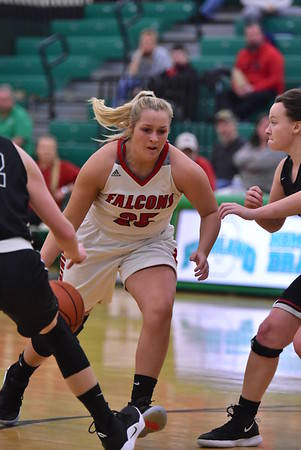 Minford senior Hannah Tolle (25) is averaging 11.6 ppg through the Falcons' 9-11 start to the '19-20 season.