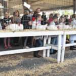 Details for upcoming Scioto County Fair remain fluid