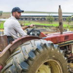 The various benefits of farm-to-table