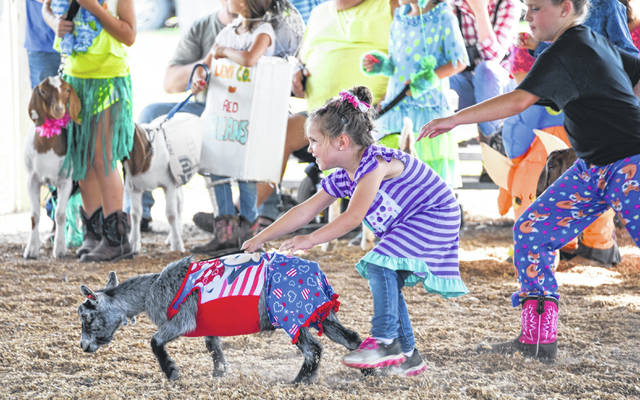 Rayna Irwin tries to keep her goat from escaping her hold at the Morrow County Fair.