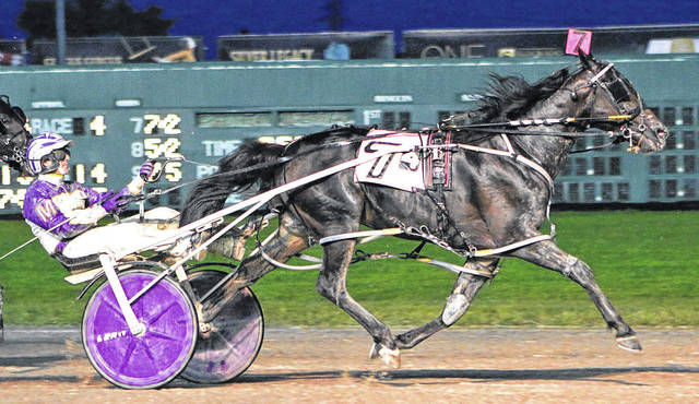 Courtesy Photo The top two-year-old pacing colt of 2018 is High On Paydaze, which is partially owned by Cardington's Donald Robinson, along with Scott Hagemeyer of Clarksville and Robert Mondillo of Delaware. The colt is trailed by Ostrander resident Brian Brown and has earned $220,700 in prize money by virtue of his five wins in seven lifetime starts. His lifetime best mark of 1:53.2f was driven by Reynoldsburg's Harness Racing Hall of Famer David Miller in the $275,000 Ohio Sire Stakes finale at Eldorado Scioto Downs.