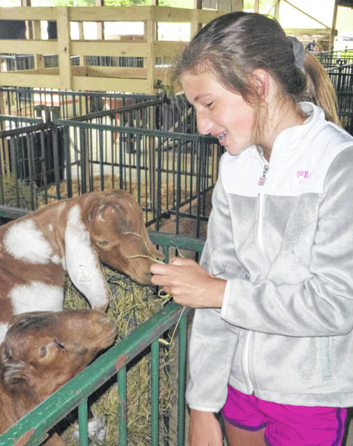 Carly Wallace takes care of her brother Kasen's goats, Max and Oliver, Monday at the Morrow County Fair. Hundreds of youngsters moved their animals into the barns as the fair opened. There are 963 exhibitors this year.