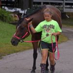Crawford County Fair organizers vote to go forward with this year's event
