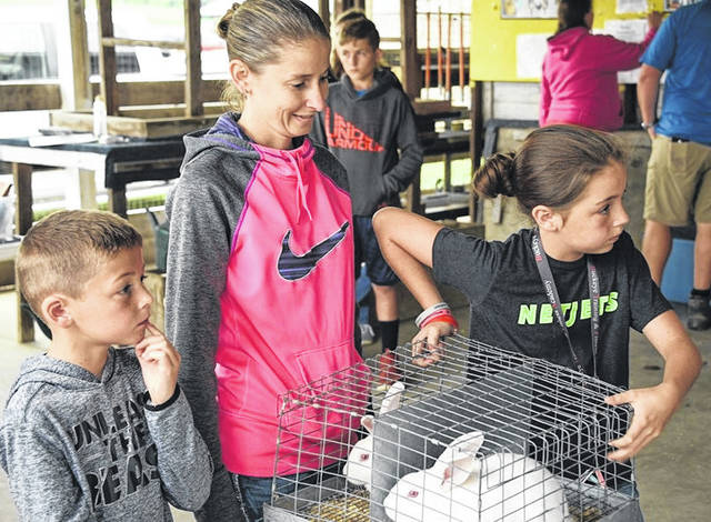 Youngsters bring rabbits to the 2019 Morrow County Fair.
