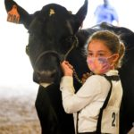 Sunday at the Morrow County Junior Fair Dairy & Sheep Shows — Photos by LeAnne Gompf