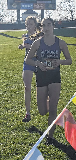 Allison Johnson finished fourth in the state cross country meet on Saturday to cap off a stellar high school career in that sport.