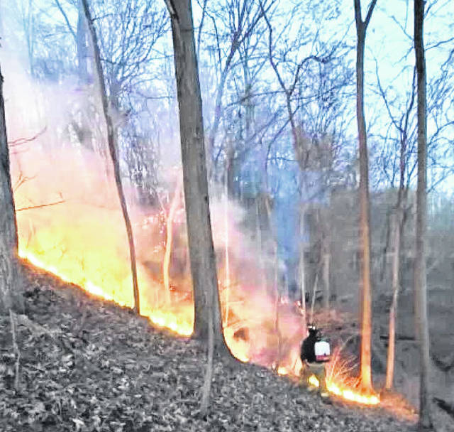 Fires of a suspicious nature were set in Mount Gilead State Park last weekend.