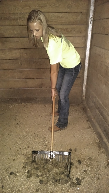 Allison C. Gallagher | Troy Daily News Lisa Nealeigh cleans the horse stalls at her family's farm. The Ohio Senate is discussing a manure storage tax credit for livestock owners or producers who invest in manure storage facilities.