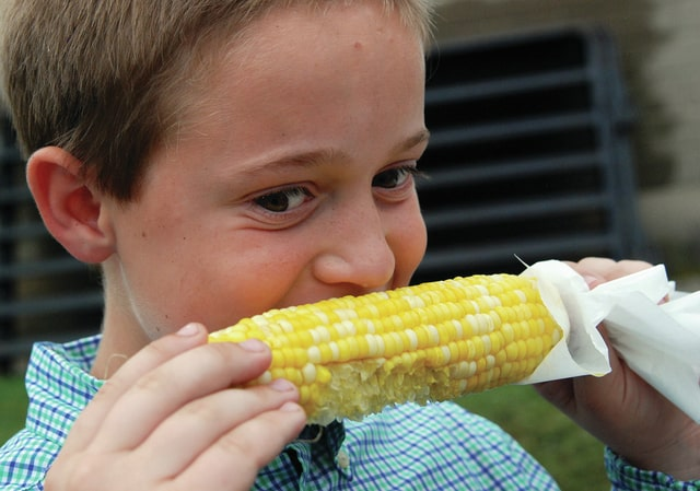 Mike Ullery | Daily Call Thomas Wallace, 9, of Casstown enjoys an ear of sweet corn on Monday.