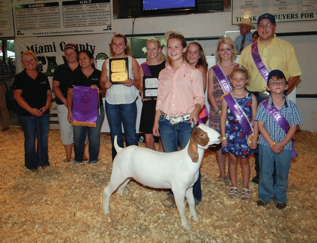Mike Ullery | Civitas Media Brodi Voight of Tipp City sold her Grand Champion Market Goat for $1,400.