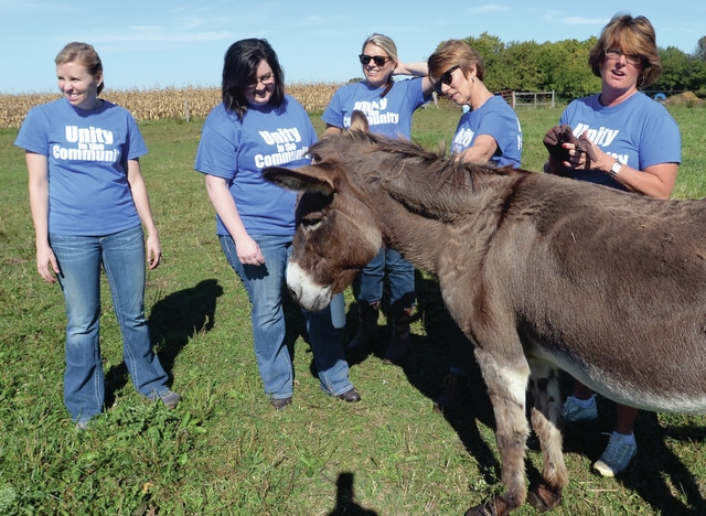Mike Ullery | Daily Call Unity National Bank employees spend some time with Bill, a donkey who lives at Eagles Wings Stable, on Wednesday. From left to right are Jenny Wilson, Stephanie Hambry, Chrissy Potts, Debbie Robart, and Kathy Sherman. Unity employees have been volunteering around the area on a variety of projects, including Hospice of Miami County, Bethany Center, Mainstreet Piqua, Meals on Wheels, and a number of others around Piqua, Covington, Troy, and Tipp City over the past two weeks.