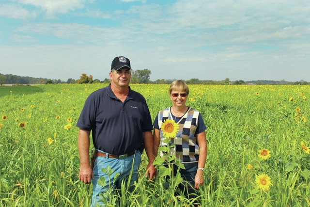 Dan and Tawni Batdorf stand in a field of sunflowers on their farm on Wednesday. The Batdorfs were honored during the Ohio Department of Natural Resources' 2015 Conservation Farm Family Awards for their conservation efforts in their region.
