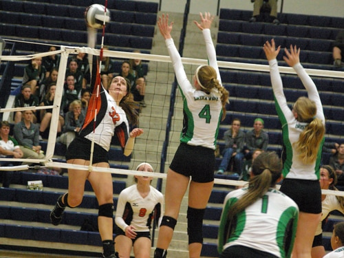 Versailles' Danielle Winner goes up for a kill during a regional semifinal volleyball match against Newark Catholic on Wednesday in Kettering.