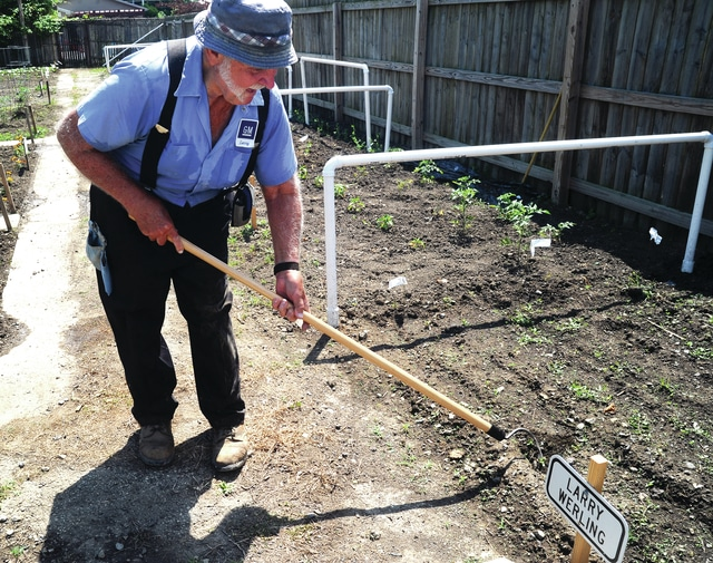 Larry Werling of Piqua tends to one of his garden plots in the Piqua Community Garden at Pittsenbarger Park on Wednesday. Werling said that he enjoys his gardening and raises all vegetables, some of which he will use and some that he will donate to others.