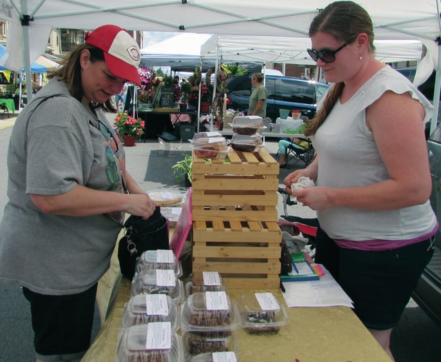 Troy resident Lori Geuder stops at Sugar Pie Bakery's booth for the second time to pick up an additional brownie at the Downtown Troy Farmers Market on Saturday.