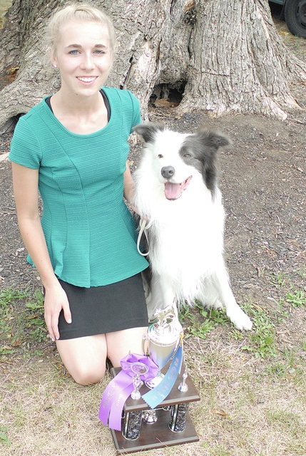 Anthony Weber | Troy Daily News Kate Bowser, of Tipp City, won the 2016 Miami County Fair Novice B Champion in Obedience Trophy with her dog, Scout, a border collie. She is a member of the 4-H Club and is the daughter of Shaun and Jody Bowser.