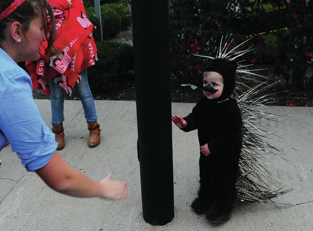 Mike Ullery | Daily Call Russell Devaudreuil, 2, of West Milton dressed as a porcupine for the 2016 Kiwanis Downtown Halloween Parade on Wednesday.