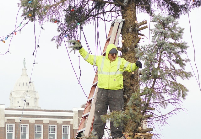 Anthony Weber | Troy Daily News After unraveling lights, workers from the city bring down the Christmas tree Wednesday on the Public Square in downtown Troy. The 49-foot-tall blue spruce was donated by the Justin Beck family of Troy.