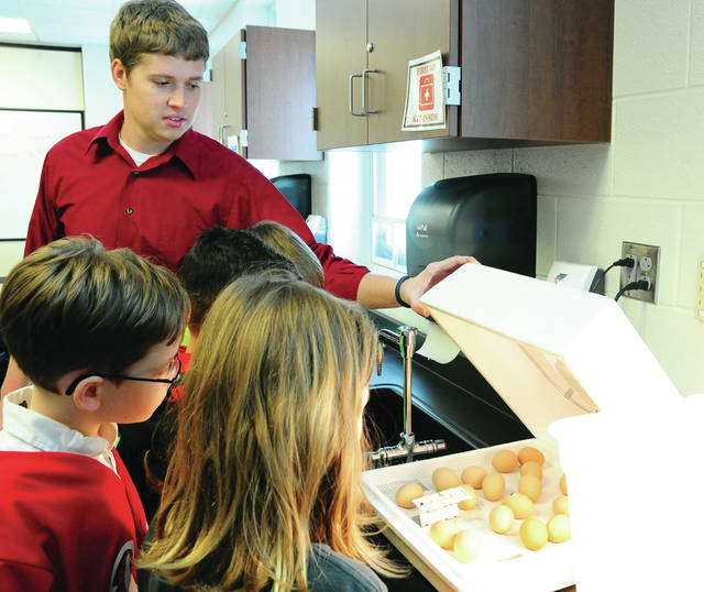 Mike Ullery | Daily Call Teacher Nick Schemmel shows students the beginnings of chicken egg hatching at Piqua Central Intermediate School on Wednesday. Fourth graders have been monitoring the eggs for nearly a month as they waited for the chicks to hatch. Pictured with Schemmel are Caiden Weigel, Mackenzie Evans, Bryce Roof, and Carson Wilder.