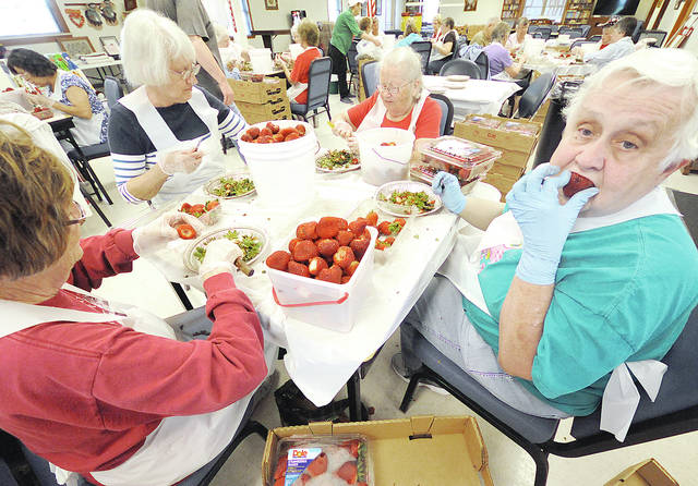 "Anthony Weber | Troy Daily News Troy Senior Citizens Center volunteers along with children and grandchildren help clean, wash and slice strawberries in preparation of the annual strawberry shortcake sale at the center during the Troy Strawberry Festival this coming weekend. According to facility executive director Tamara Baynard-Ganger at least 1,500 pounds of berries were brought in from Marsh Supermarket Thursday to prepare for the event this weekend. ""I got an army,"" she said."