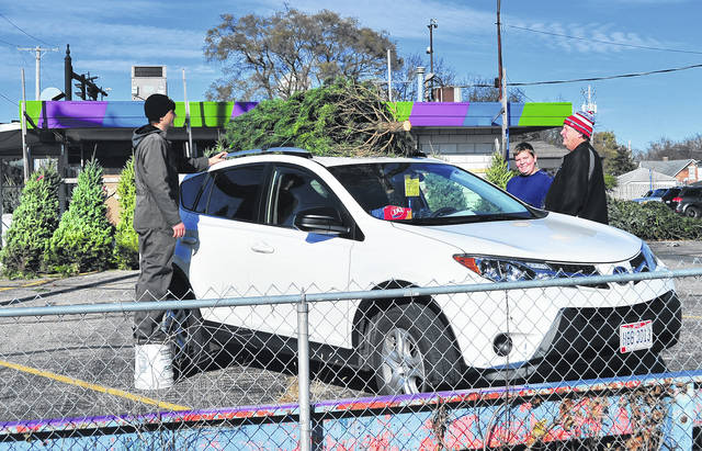 Mike Ullery | Daily Call Cody McMillan, left, and Dan McMillan, behind car, finish tying down a Christmas tree for Jerry Rosengarten and his son Drew, of West Milton, right, at George's Dairy Bar on Friday afternoon.