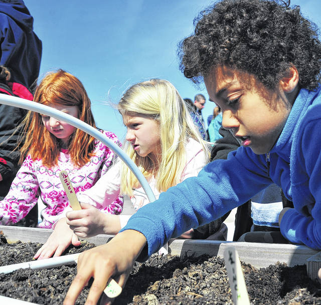 Mike Ullery | Daily Call Henry Crowe, right, plants vegetables in the Garden Tribe School Garden near Piqua Central Intermediate School on Monday. Crowe, a fifth-grade student, and his school mates, with guidance from Miami County Master Gardeners planted a variety of vegetables that will be cared for and harvested by students.