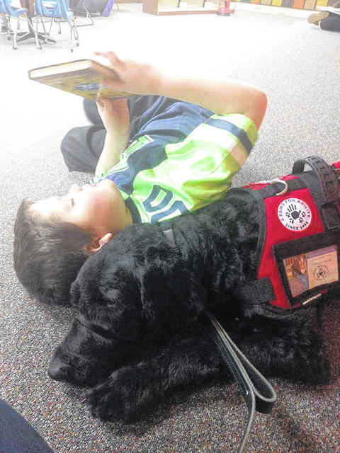 "Provided photos In honor of the Big Read's book for southwestern Ohio, ""The Underdogs"" by Melissa Fay Greene, Bradford Public Library recently hosted service dog Mulder and his human, Joe Welter. Mulder's training center, 4 Paws for Ability, located in Xenia, is highlighted in Greene's book."