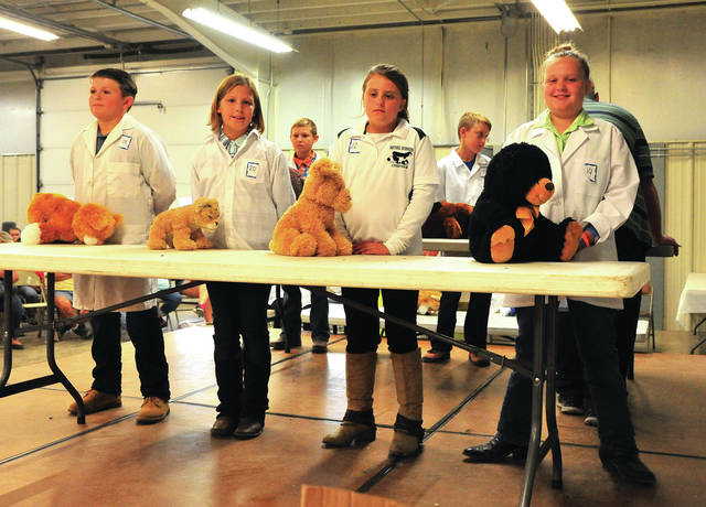 Mike Ullery | AIM Media Midwest Ian Coffey, Zoe Holfinger, Jada Welch, and Charlotte Norman, left to right, prove that the show must go on as they use stuffed animals to represent their rabbits during Tuesday evening's Rabbit Showmanship event.