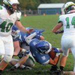 Vikings hold off Bees