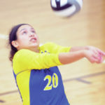 Volleyball Roundup