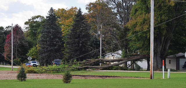 Mike Ullery | Daily Call High winds are believed to have caused a tree to topple across Cox Road, south of Pleasant Hill on Saturday afternoon, bringing down power lines. No one was injured but Cox Road was closed until crews could remove the tree.
