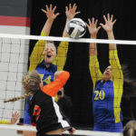 Lehman Catholic volleyball starts down D-IV tourney trail with three-set win
