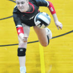 Area athletes earn state, district honors