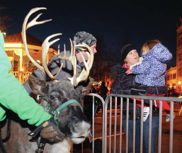 Darrin and Liana Michael of Piqua introduce their daughter, Harper, 2, to a live reindeer at Piqua's Christmas on the Green on Friday.