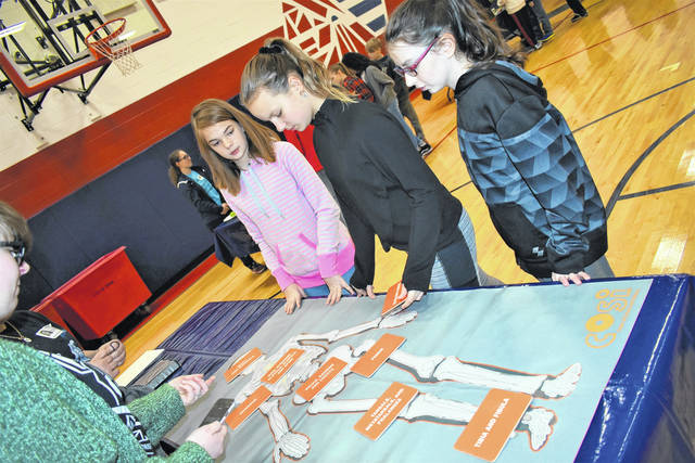 Cody Willoughby | AIM Media Midwest Sixth graders Isabelle Howard, Brenna Thompson, and Abby Blackshire assemble and label parts of a human skeleton during 'COSI on Wheels' on Wednesday at Piqua Central Intermediate.