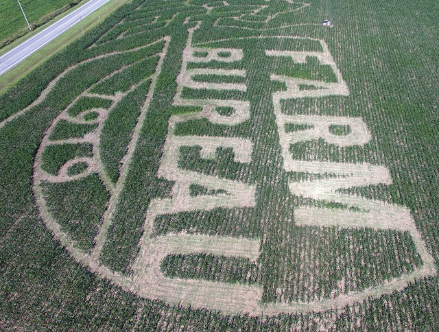 A specialized cutter from Precision Maze, in Missouri, top right, cuts out the corn maze at the Miami County Park District's Lost Creek Reserve on Thursday. The operator, using a GPS-guided cutter on a skid-loader took most of two days to cut the maze. This year's maze is sponsored by the Miami County Farm Bureau who are celebrating their 100th anniversary. The maze will be open to the public during Fall Farm Fest on October 12-13. The maze will also be available to rent for private events ©2019 Miami Valley Today. All rights reserved