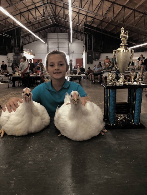 Myah Romer, of Troy, won Grand Champion market chickens at the Miami County Fair. She is the daughter of Cortney and Adam Romer.