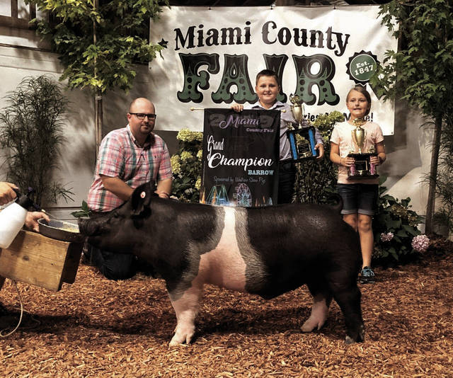 Miami Valley Today Dylan Hollowell, 10, of Covington, exhibited the Grand Champion market barrow on Tuesday.
