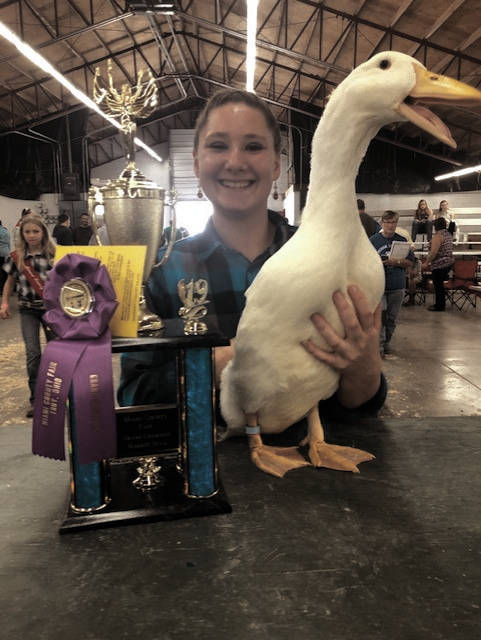 Pami Parke, 17, of Covington, won Grand Champion market duck at the Miami County Fair.