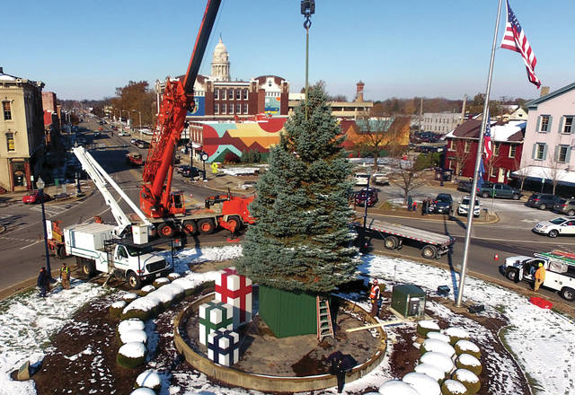 The city of Troy Parks Department and Piqua Steel hoist the city's 2019 Christmas tree into position on the Public Square on Thursday morning.