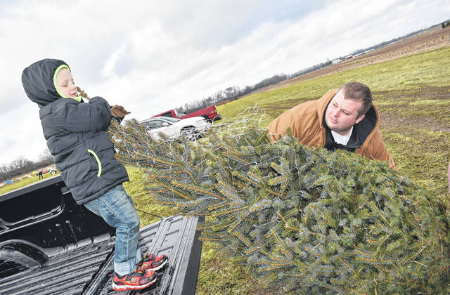 Miami Valley Today file photo For some cities and villages, including Troy, Piqua and Covington, Christmas tree refuse pickup is available on regular trash days.