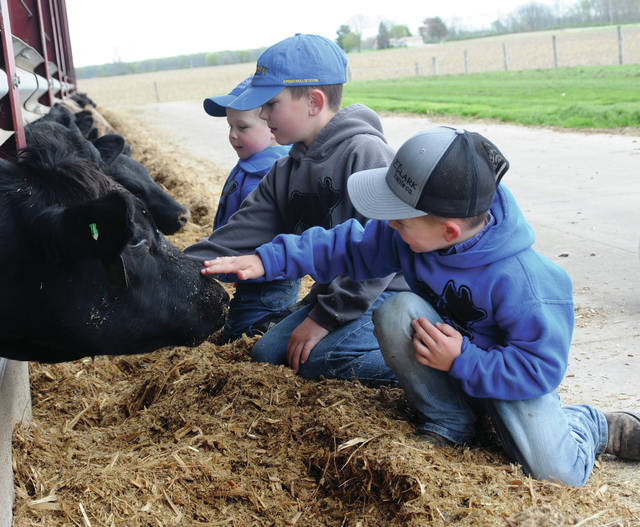Far left, Baylor, 3, middle, Baine, 8, and Beckett, 5, are the seventh generation of farmers in the Clark family. Father Brent Clark said that if the beef industry's trend with record losses — with record profits being culled by the packing industry — cattle production may not make it to his sons' turn at the livelihood in the future.